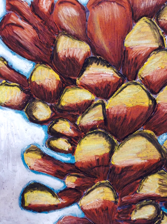 Oil Pastel Nature Drawings: Free Lesson Plan Download - The Art of Ed