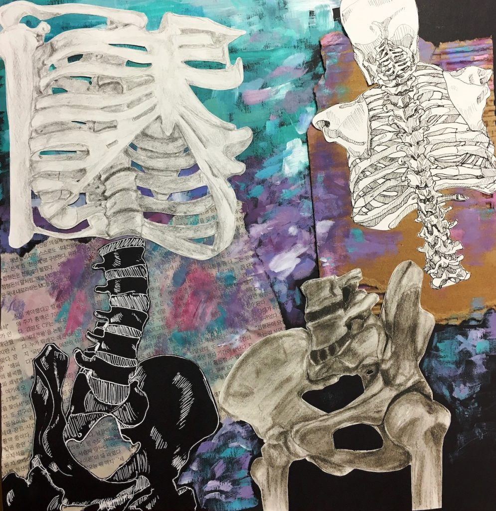 A Creative Way To Teach Your Students The Art Of Anatomy The Art Of Ed