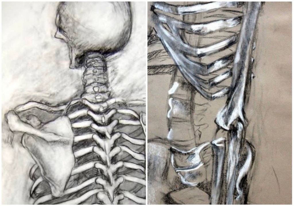 A Creative Way to Teach Your Students the Art of Anatomy - The Art of Ed