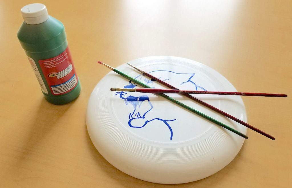 frisbee and paint