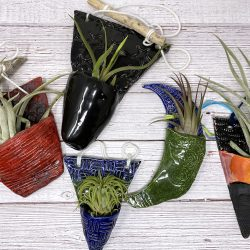 five ceramic slab planters with air plants on a table